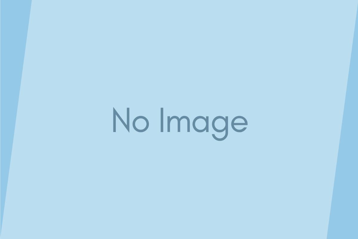 ロイヤルカナン ベッツプラン・療法食価格改定のお知らせ
